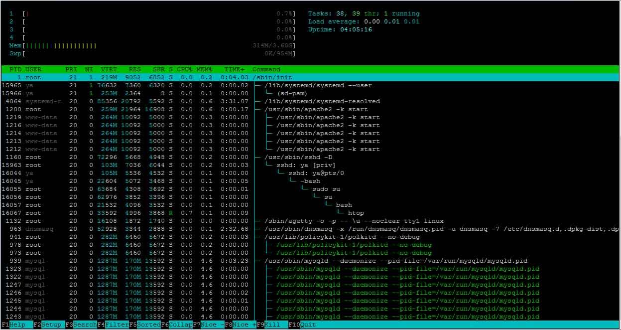 Статус сервера и сети в Ubuntu